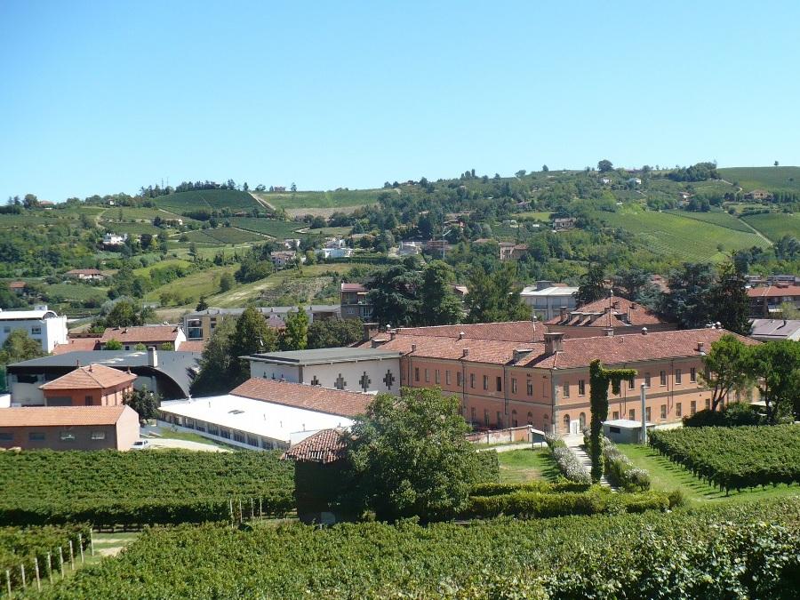 I vini del Lazio: viaggio alla scoperta di antichi sapori